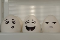 Funny Eggs picture (100)